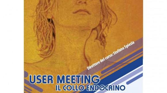 User meeting. Il collo endocrino