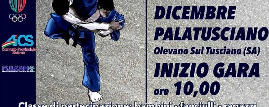 Olevano in Judo